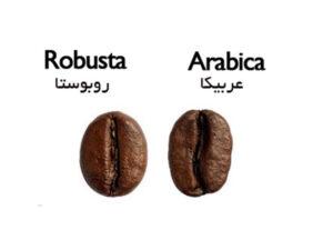 قهوه روبوستا و قهوه عربیکا