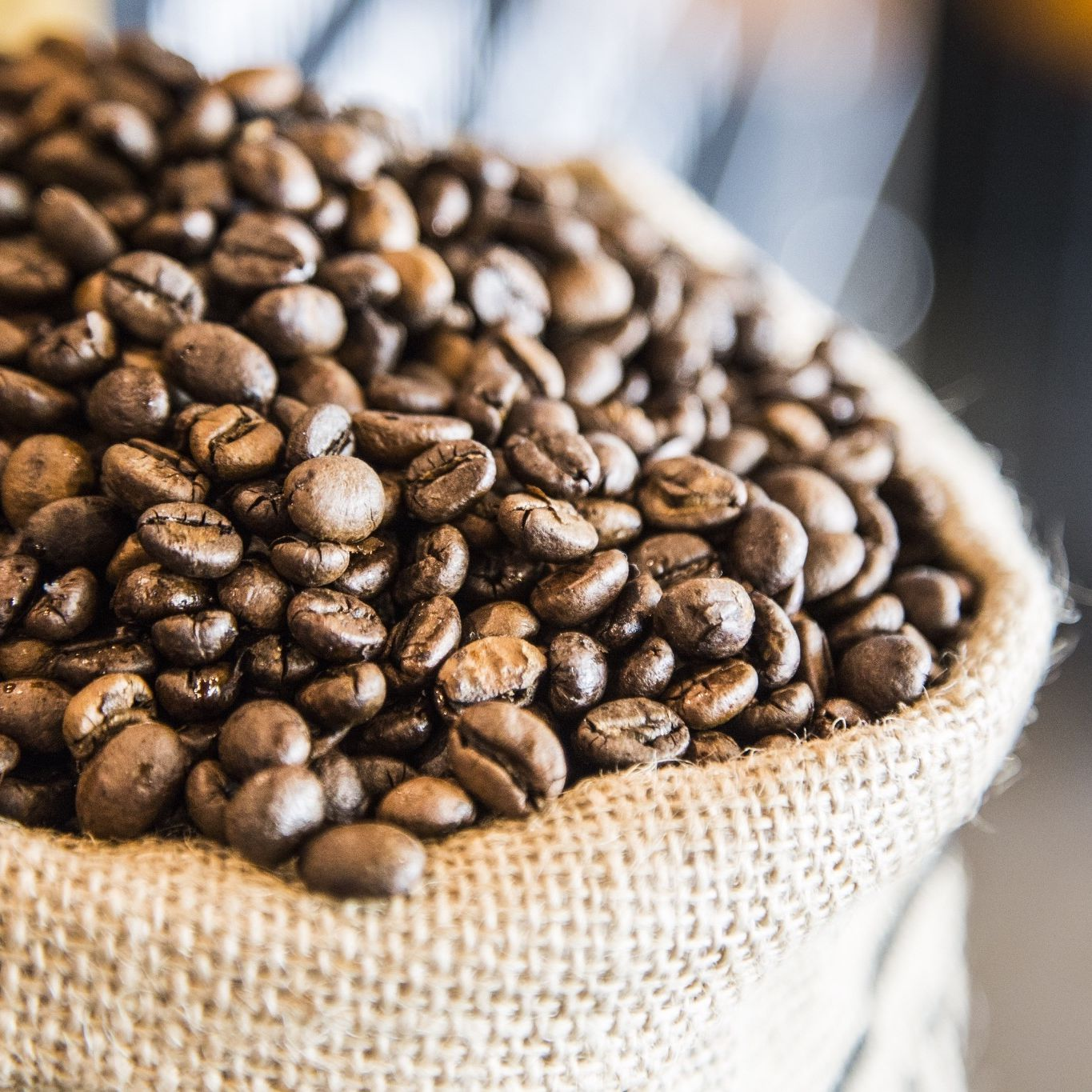 Ethiopia's Coffee-Growing Areas May Be Headed for the Hills